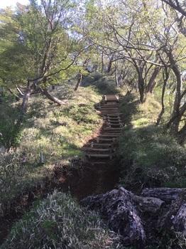塔の岳から丹沢山へ1.JPG
