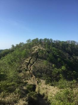 塔の岳から丹沢山へ2.JPG